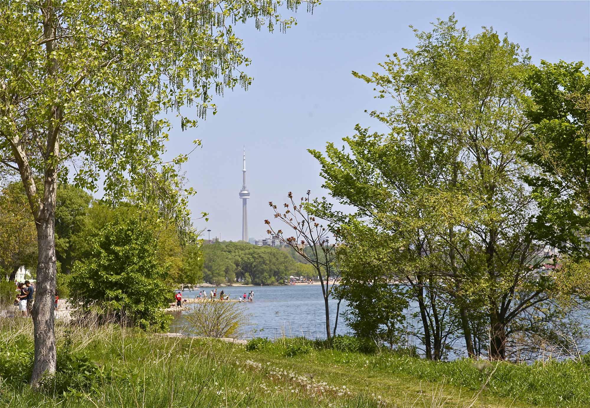 Swansea Community in Toronto